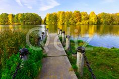 Qdiz Stock Photos | View from Dock on Lake and Colourful Trees in the Urban Park in Autumn Season,  #autumn #background #beautiful #beauty #bright #calm #calmness #clear #colorful #day #dock #environment #golden #grass #green #jetty #lake #landscape #leaf #leaves #multicolored #natural #nature #nobody #outdoor #park #peaceful #pier #plant #pond #reflection #relax #relaxation #River #sand #scenery #scenic #season #Serene #shore #sky #sunlight #sunny #tranquil #tranquility #tree #view...