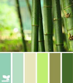 Design Seeds Color Palette | bamboo hues } Design Seeds