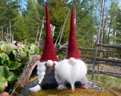 Swedish gnome tomte girl gnome jultomte nisse Swedish