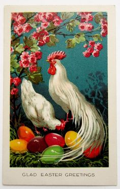 Glad EASTER Beautiful White Hen & Rooster Colored Eggs Postcard
