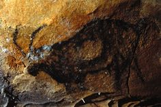 We can now state that the Cosquer Cave used to be one of the most important cave art sites in Europe, comparable to Lascaux, Trois-Frères, Altamira or Chauvet. Paleolithic Art, Prehistoric Age, Beneath The Sea, Art Sites, Sea Art, Cave Painting, Human Art, Aboriginal Art, Ancient Art