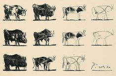 """Picasso, Bull Lithographs (1945). Apple uses this particular modern minimalistpiece in their internal trainings for designers. The name of the training in reductionis, """"What Makes Apple, Apple."""""""