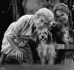 Promotional portrait of American actresses Bea Benaderet (1906 - 1968) (left), as Kate Bradley, and Linda Henning, as Betty Jo Bradley Elliot, along with canine actor Higgins the Dog (1957 - 1975) for an episode of the television series 'Petticoat Junction' entitled 'Betty Jo's Dog,' Los Angeles, California, August 6, 1964. The episode was originally broadcast September 9, 1964.