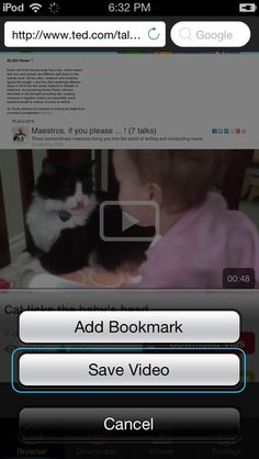 Video Download app. Use with iMovie