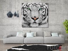 Printen op aluminium witte tijger