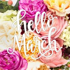 March is my favorite! It's my birthday month and is the month that welcomes spring!🌸 Any other March lovers out there?Floral 📷 by the SC Stockshop! Days And Months, Months In A Year, 12 Months, Hello January, December, May Month Quotes, Facebook Background, Its My Birthday Month, April Easter