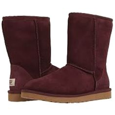 Pre-owned Ugg Australia Ugg Classic Short - New In Box Port Boots ($152) ❤ liked on Polyvore featuring shoes, boots, ankle booties, 20. boots., ugg, botas, port, shearling-lined leather boots, round toe ankle booties and round toe boots