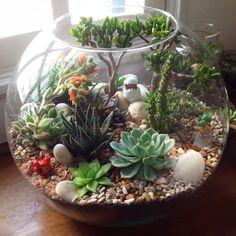 FLO atelier botânico — :: TERRARIUM PLANETA :: clique na imagem para...