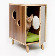 The Modernist Cube | 31 Not-So-Humble Abodes For Cats