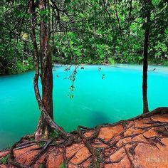 """part of cooper creek known as """"the blue hole"""" . Perth, Brisbane, Melbourne, Cool Pictures, Cool Photos, Amazing Photos, Destinations, Blue Hole, Swimming Holes"""