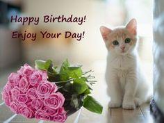 Happy Birthday Kitten, Happy Birthday Little Girl, Happy Birthday Rose, Birthday Wishes Flowers, Happy Birthday Cupcakes, Happy Birthday Wishes Cards, Happy Birthday Candles, Happy Birthday Pictures, Happy Birthday Gifts