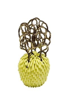 Linda Lopez, Untitled (Pineapple)