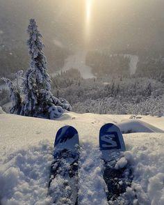 "14.1k Likes, 81 Comments - Salomon Freeski (@salomonfreeski) on Instagram: ""How does he do it? Even @mattiasfredrikssonphotography 's ski tip shots are better than most. Early…"""