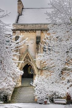 Places That Are Even Better During The Winter Balliol College - Oxford, England - Inspiration for Darpan, Nandala in Kiss of the Assassin by Jayla Jasso Oxford England, Snow Scenes, Winter Scenes, Winter Magic, Winter's Tale, Winter Beauty, Winter Christmas, Paris Christmas, Christmas Candle