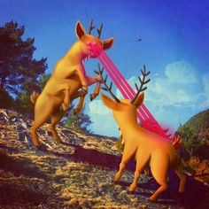 """New generations"" by Juan Carlos Paz BAKEA - Carefully selected by Gorgonia www. Princess Zelda, Disney Princess, Typography Poster, Digital Illustration, Tinkerbell, Surrealism, Deer, Disney Characters, Fictional Characters"
