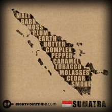 The full range of our Sumatran Coffee flavours in a clever infographic