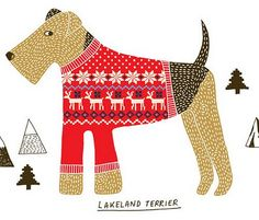 illustrator kate sutton - her Lakeland Terrrier in a fairisle sweater  £10.00 on Etsy http://www.etsy.com/listing/88000231/lakeland-terrier-print