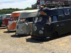 Hi top bus lineup
