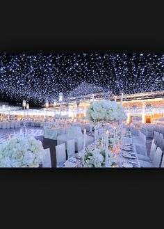 Beautiful lights for outdoor wedding or just any party !