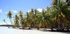Rantapallon kohdeopas: Tahiti