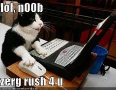 [Image - 18579] | Zerg Rush | Know Your Meme