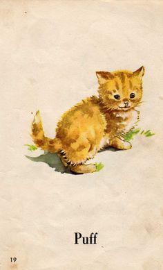 Fun with Dick & Jane - Puff the cat