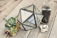 Yesterday's Sweetheart: Do It Yourself >> Terrarium