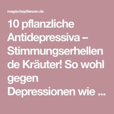 10 pflanzliche Antidepressiva – Stimmungserhellende Kräuter! So wohl gegen Depressionen wie auch gegen depressive Phasen gibt es verschiedene wirksame pflanzliche Antidepressiva. Meist ist es nötig, die antidepressiven Kräuter über mehrere Wochen hinweg täglich einzunehmen. Es gibt bereits eine…