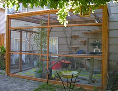 Learn how cat enclosures by Catio Spaces are creating positive