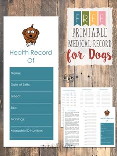 14 best medication for dogs images on pinterest dog cat pets and pup