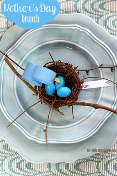 Mothers Day Brunch Idea or Baby Shower Idea ~ mother bird with eggs in nest, or mother bird with her number of baby birds! Easy DIY pictorial on thecelebrationshoppe.com #mothersday #brunch