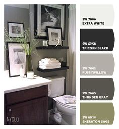 (Possible color for downstairs powder room). Gray Wall is SW 7643 Pussywillow