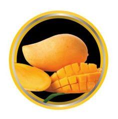Mango Fruity Flavored E-Liquid for Vaporizers | Smoking Vapor EJuice