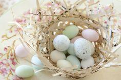Ideen ausgeblasene gefärbte Eier Deko langhaltig Frühling