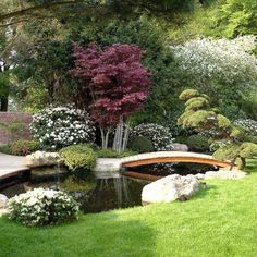 modern Garden by Kirchner Garten + Teich GmbH Here you will find photos of interior design ideas. Get inspired! Backyard Water Feature, Ponds Backyard, Backyard Landscaping, Japanese Garden Plants, Japanese Garden Design, Design Fonte, Garden Pond Design, Modern Landscape Design, Dream Garden