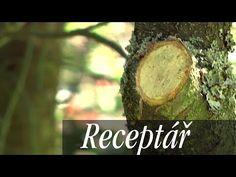 Jak na letní řez ovocných stromů   JakTak.cz Flowers, Crafts, Gardening, Youtube, Tree Structure, Manualidades, Florals, Garten, Handmade Crafts