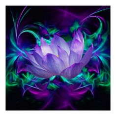 Purple Lotus flower and its meaning Poster
