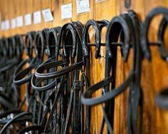 10 Quick Ideas To Help Get Your Barn Organized