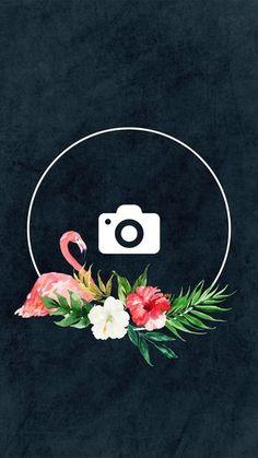 5 Capas para o seu Destaque dos Stories + Como Trocar a Capa Sem Postar a Imagem Instagram Logo, Free Instagram, Instagram Feed, Pink Instagram, Instagram Models, Icon Photography, Amazing Photography, Instagram Background, Insta Icon