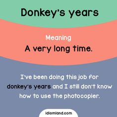 Do you like donkeys? #idioms #english #learnenglish