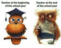 The ontogeny of a teacher. :P
