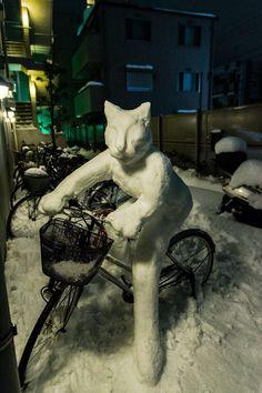 Snow cat rides a bike: 昨日の大雪で作った『雪だるニャ』だそうで… 知らない人のチャリだそうで… 持ち主のリアクションが気になるそうで…