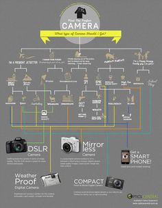 Infographic: What Type of Camera Should I Get?