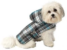 PetRageous Designs Alberta Quilted Dog Parka