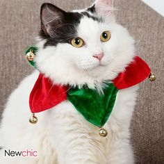 Christmas Pet Supplies Pet Scarf Neck Dog Cat Christmas Gift Pet Triangle Scarf Wholesale Christmas Pet Supplies Pet Scarf Neck Dog Cat Christmas Gift Pet Triangle Scarf from Our website with high quality and fast shipping worldwide. Christmas Animals, Christmas Cats, Kitten Accessories, Unicorn Stuffed Animal, Dog Suit, Puppy Collars, Bird Toys, Cat Supplies, Christmas Costumes