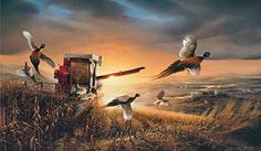 Evening Surprise-Pheasants by Terry Redlin