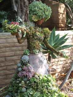 """Succulent People"", created by Pat Hammer, Director of Operations of the San Die. ""Succulent People"", created by Pat Hammer, Director of Operations of the San Diego Botanical Garden. Image by Carey Garden Whimsy, Outdoor Gardens, Succulent Garden Design, Succulents Garden, Garden Design, Garden, Succulents, Plants, Fairy Garden"