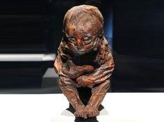 6500 Yaşında Bir Bebek..  M.Ö..4000 yılında Mumyalandığı tespit edilmiş..  10 Aylık iken kalp ile ilgili bir sorundan  Ölmüş..