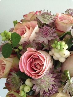 You searched for bouquet »