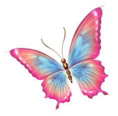 .PINK AND BLUE BUTTERFLY